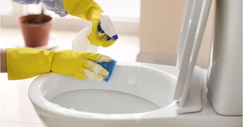 トイレ大掃除